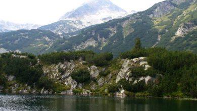 Photo of Национален парк Пирин